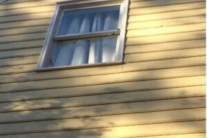 Siding Replacement & Paint 1