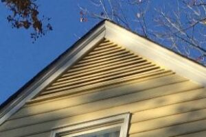Siding Replacement & Paint 2